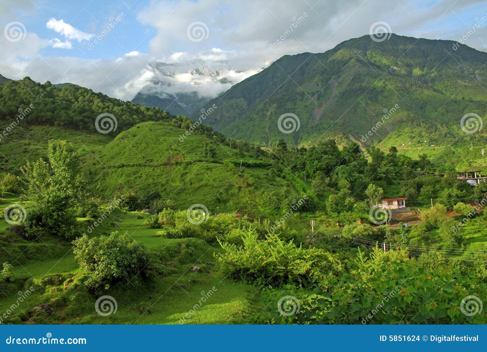 Kangra India  city pictures gallery : Mountain Green Himalayas, Kangra India Stock Images Image: 5851624