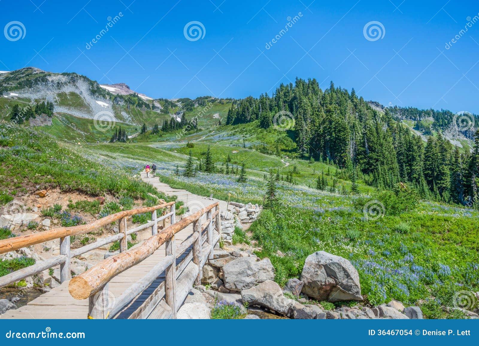 Washington State Travel Id
