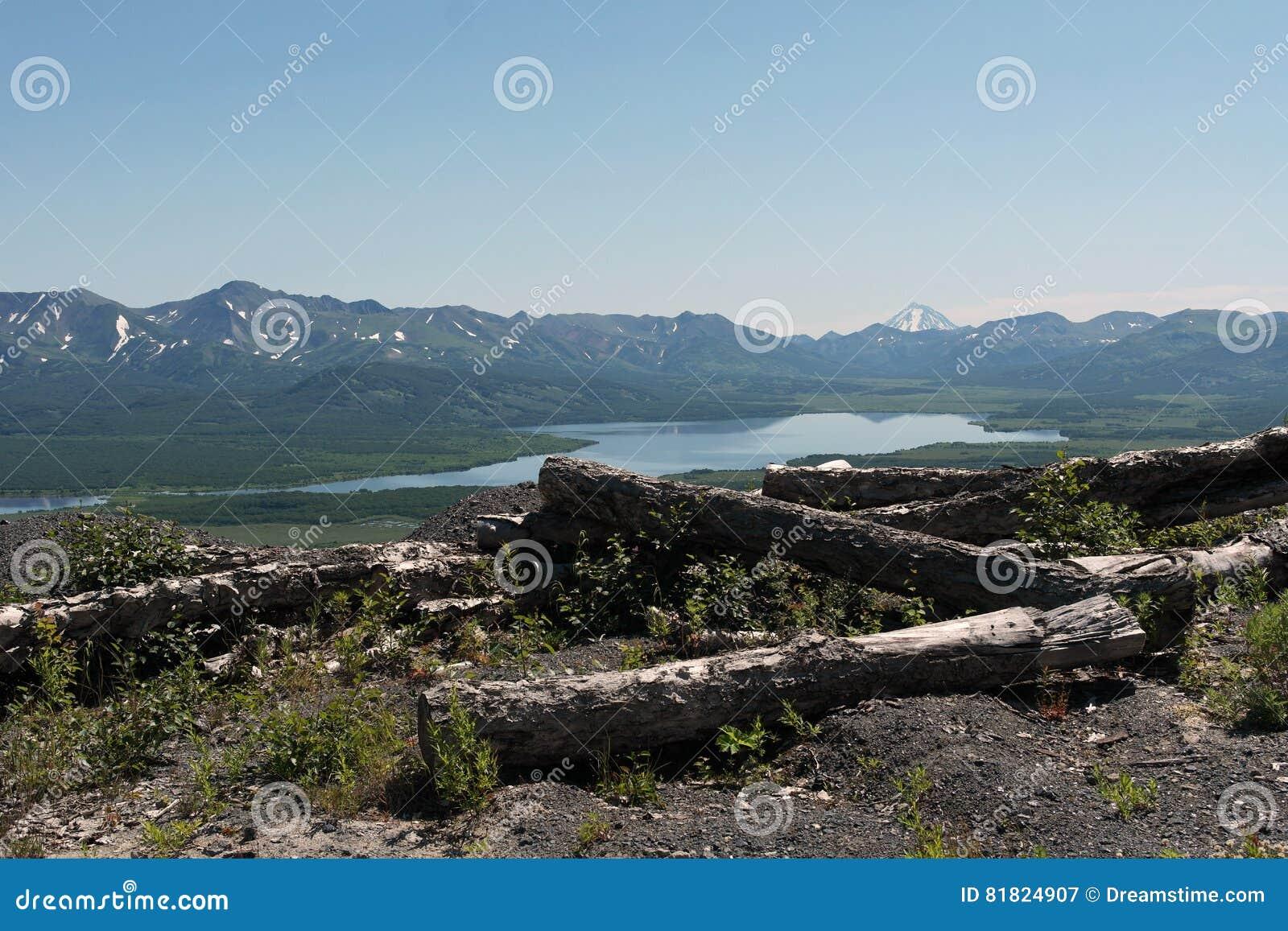Mountain Lake Die gestürzten Bäume