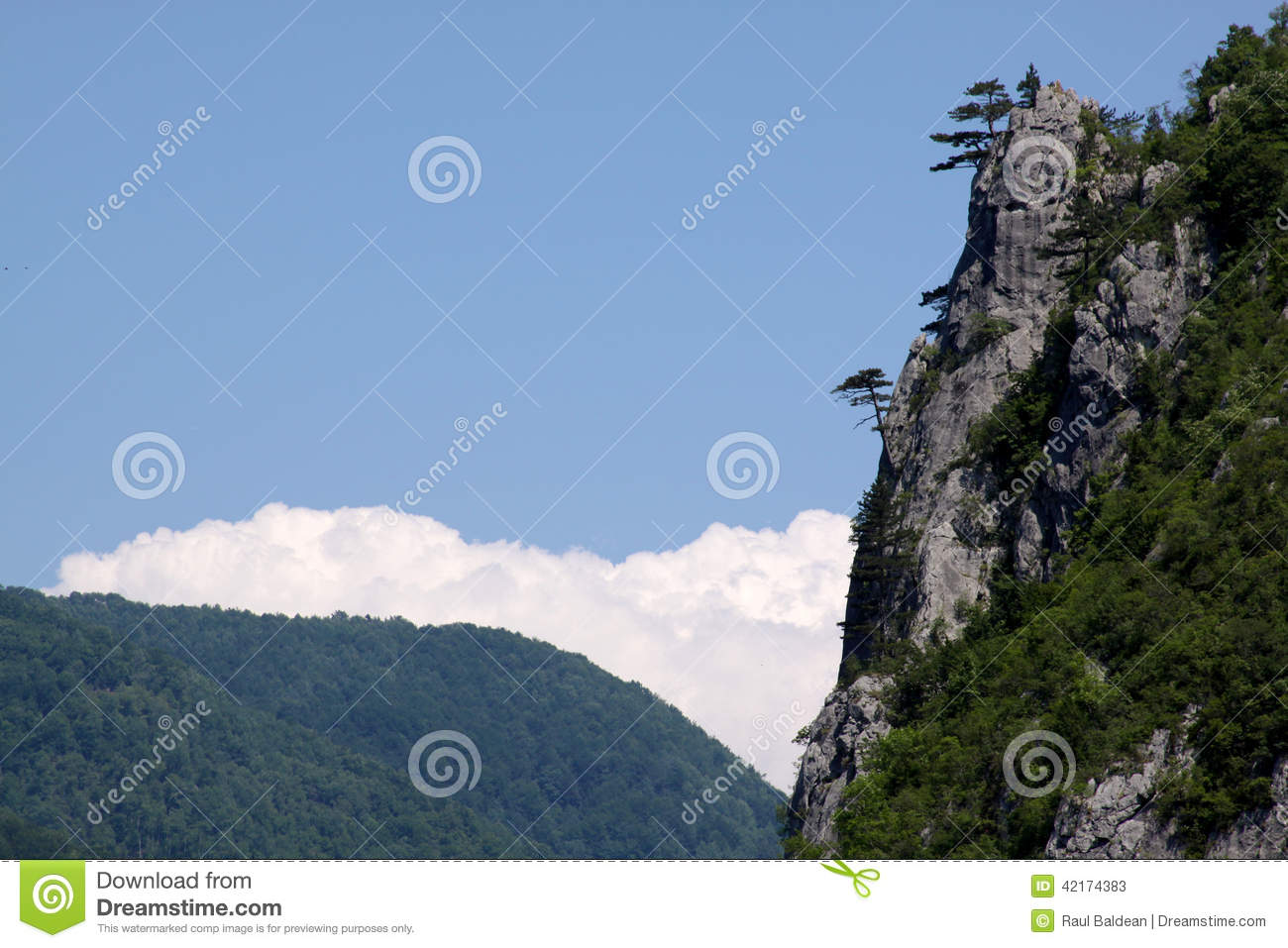 Mountain landscape with pine trees on rocks