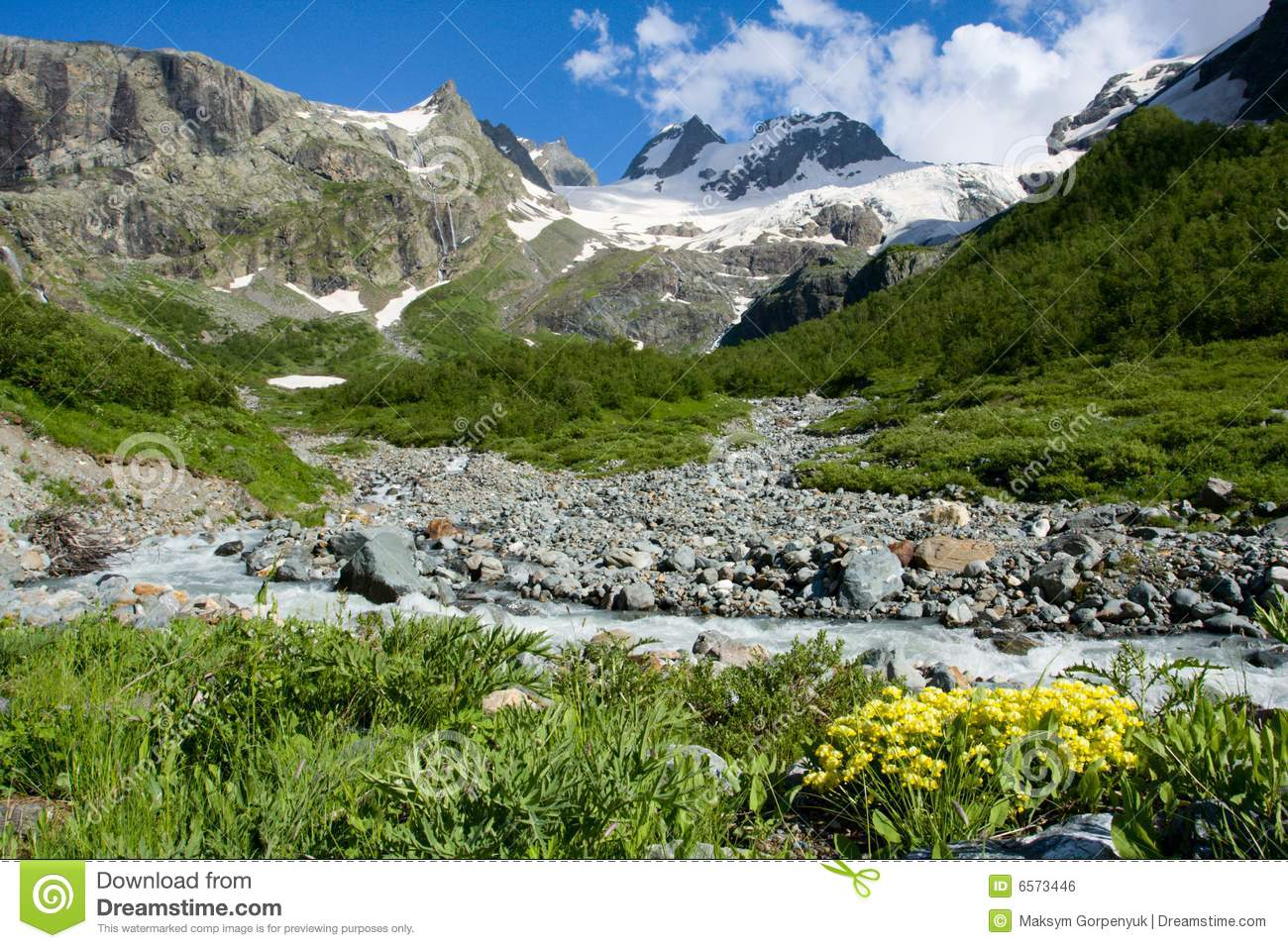 Mountain Landscape With River And Flowers Royalty Free