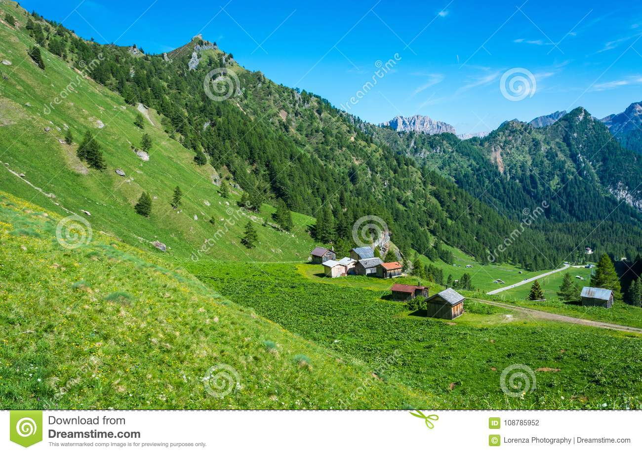 Mountain landscape in summer with characteristic barns in Trentino Alto Adige. View from Passo Rolle, Italian Dolomites, Trento, I