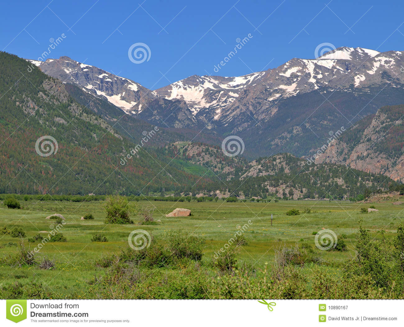 Mountain Meadow Stock Image. Image Of Snow, Meadows, Clean