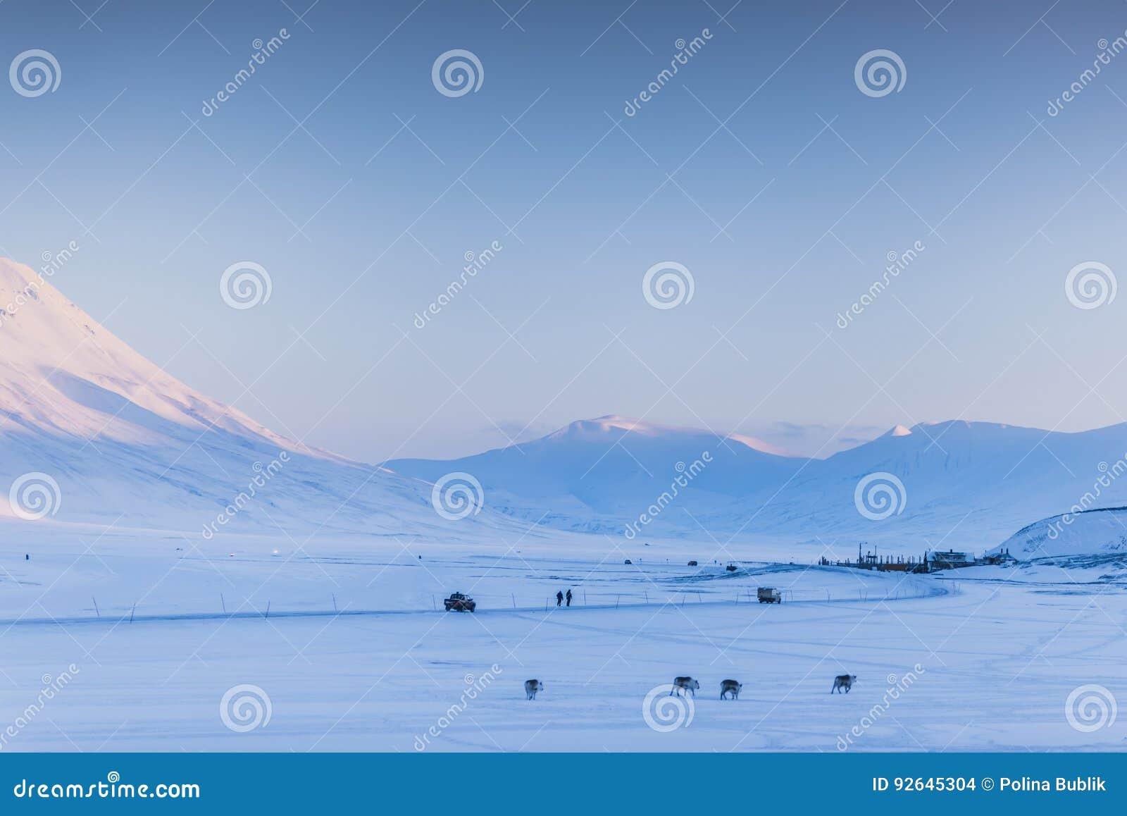 Mountain Nature Svalbard Longyearbyen Svalbard Norway With