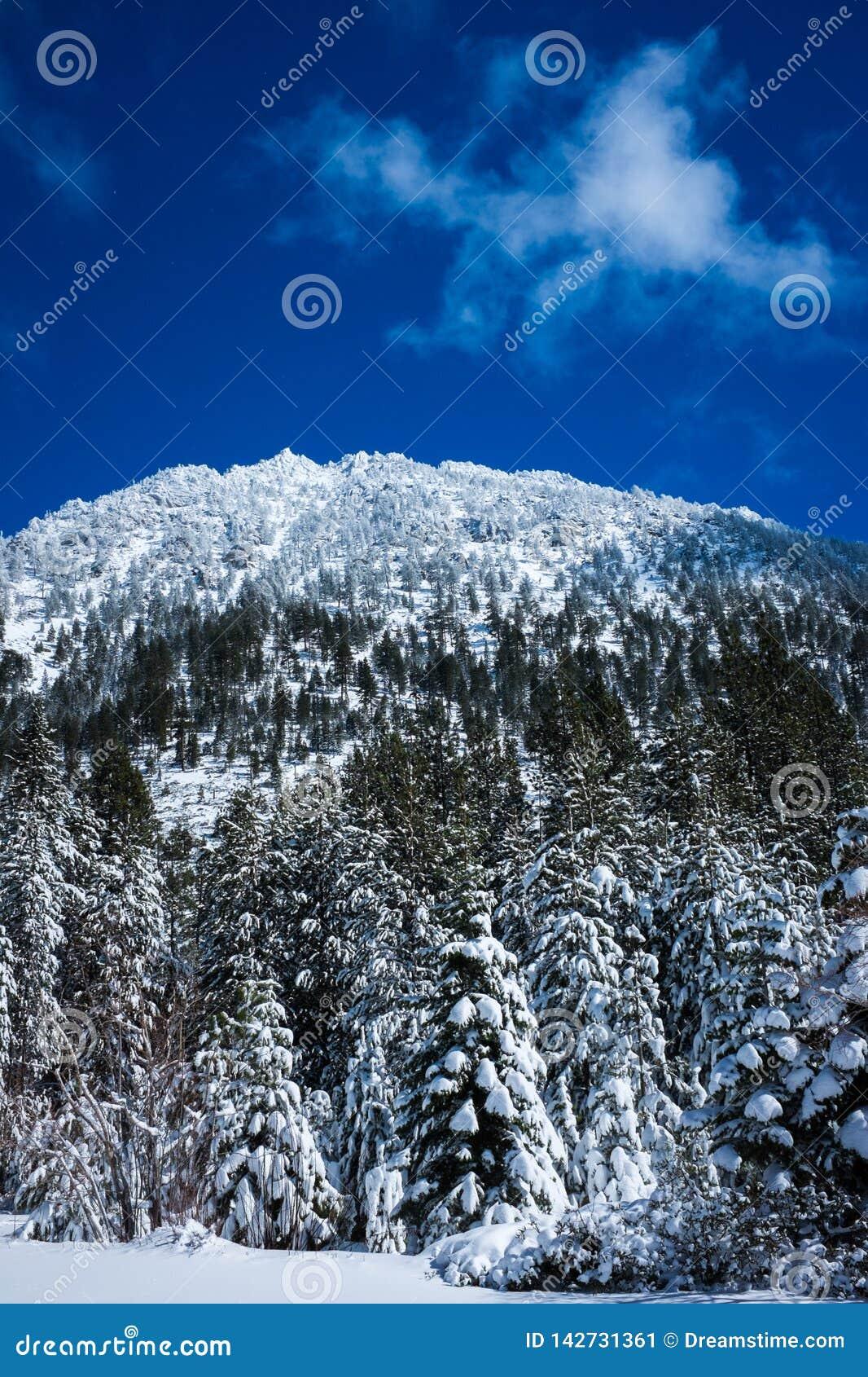 Mountain near Lake Tahoe