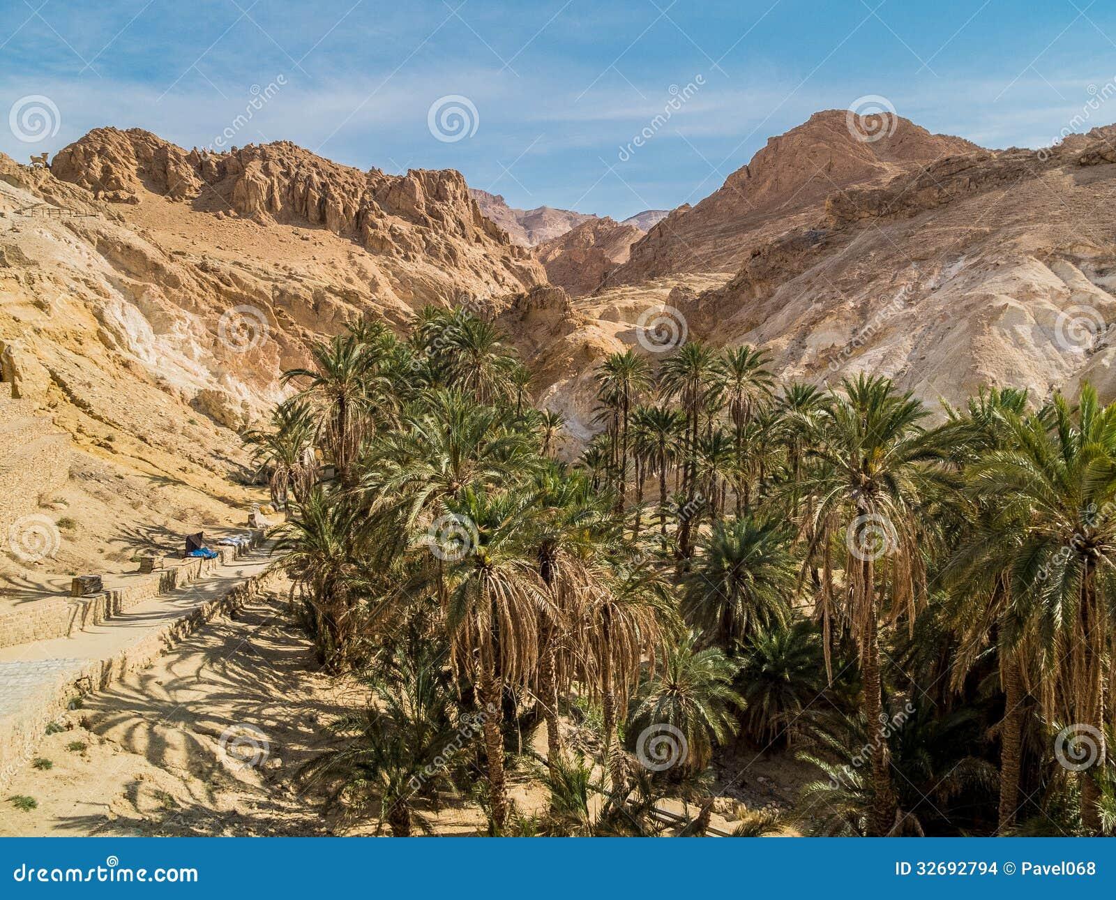 Mountain oasis chebika sahara desert tunisia view africa image32692794