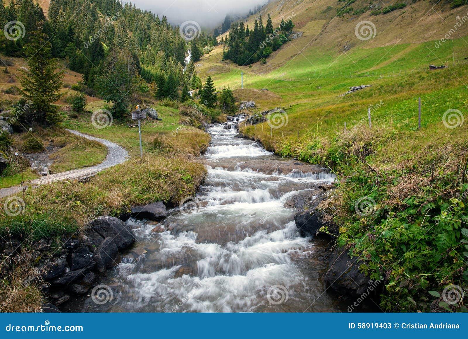 Grindelwald Stream