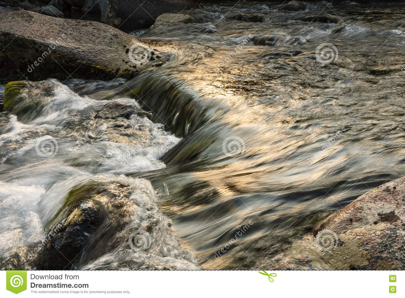 Mountain River In Summer Landscape Stock Photo - Image of
