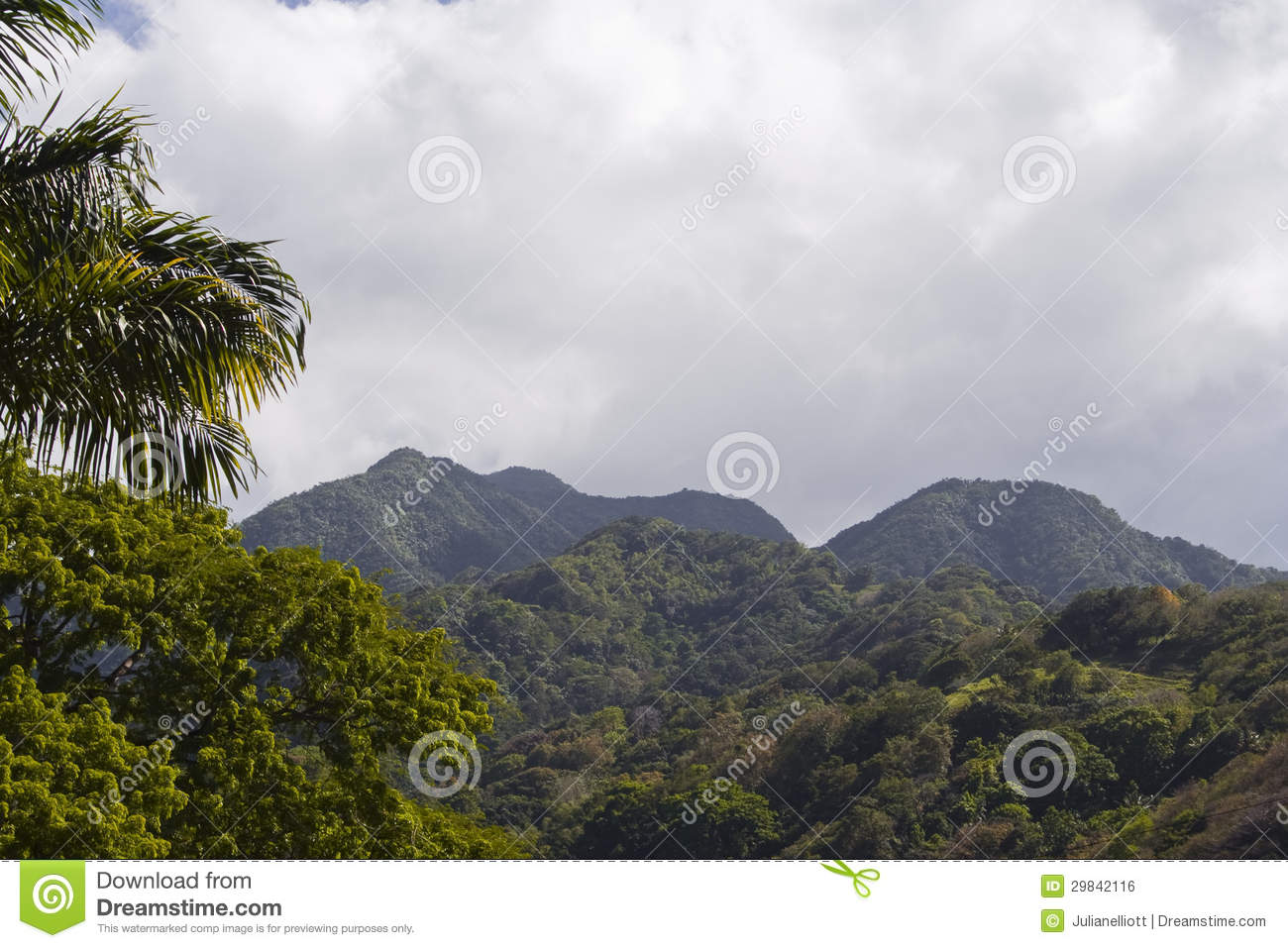Explore The Beauty Of Caribbean: Mountain Scenery Of Martinique Royalty Free Stock Image