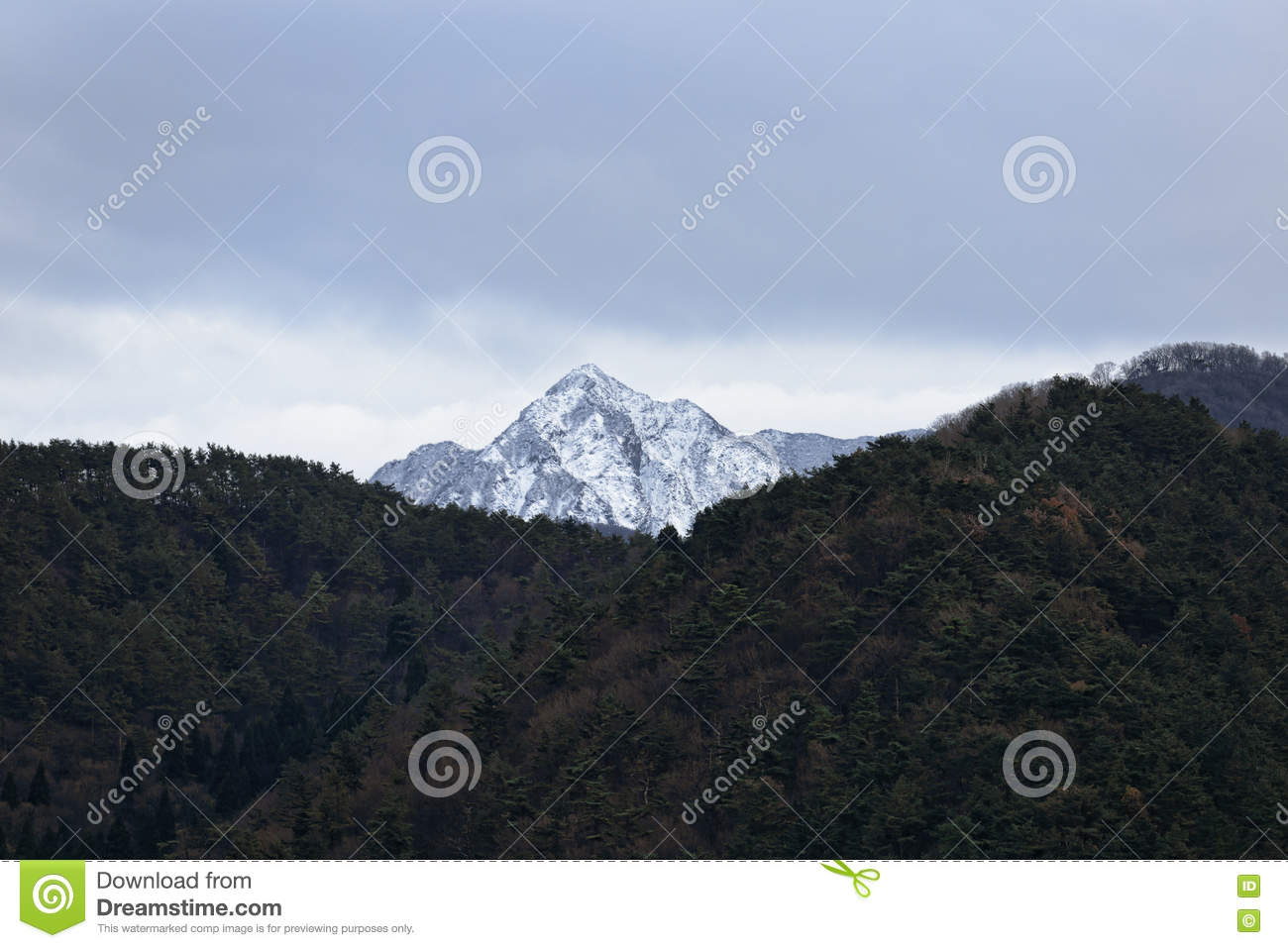 Mountain with the snow