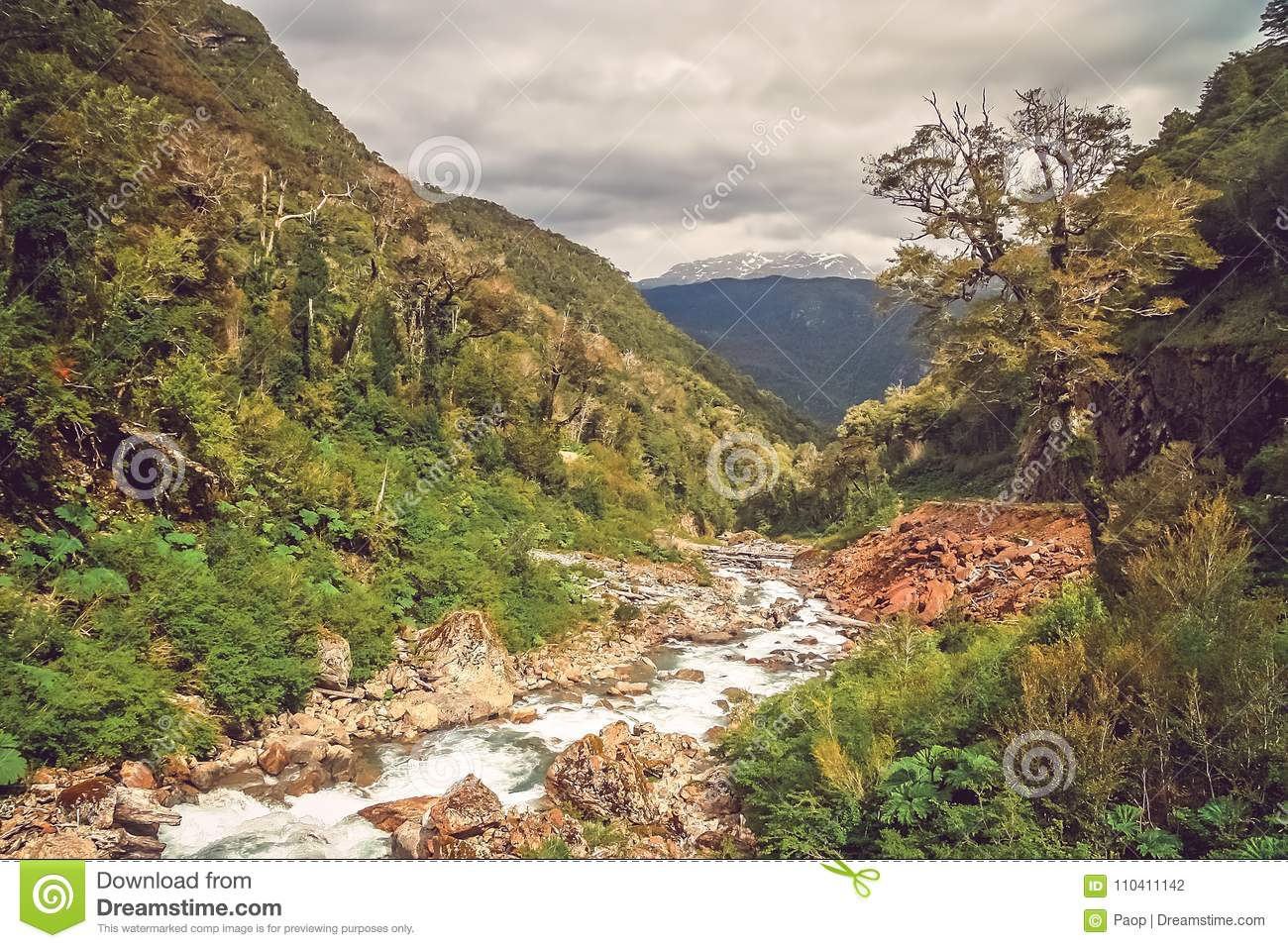 Mountain stream in canyon in Chile