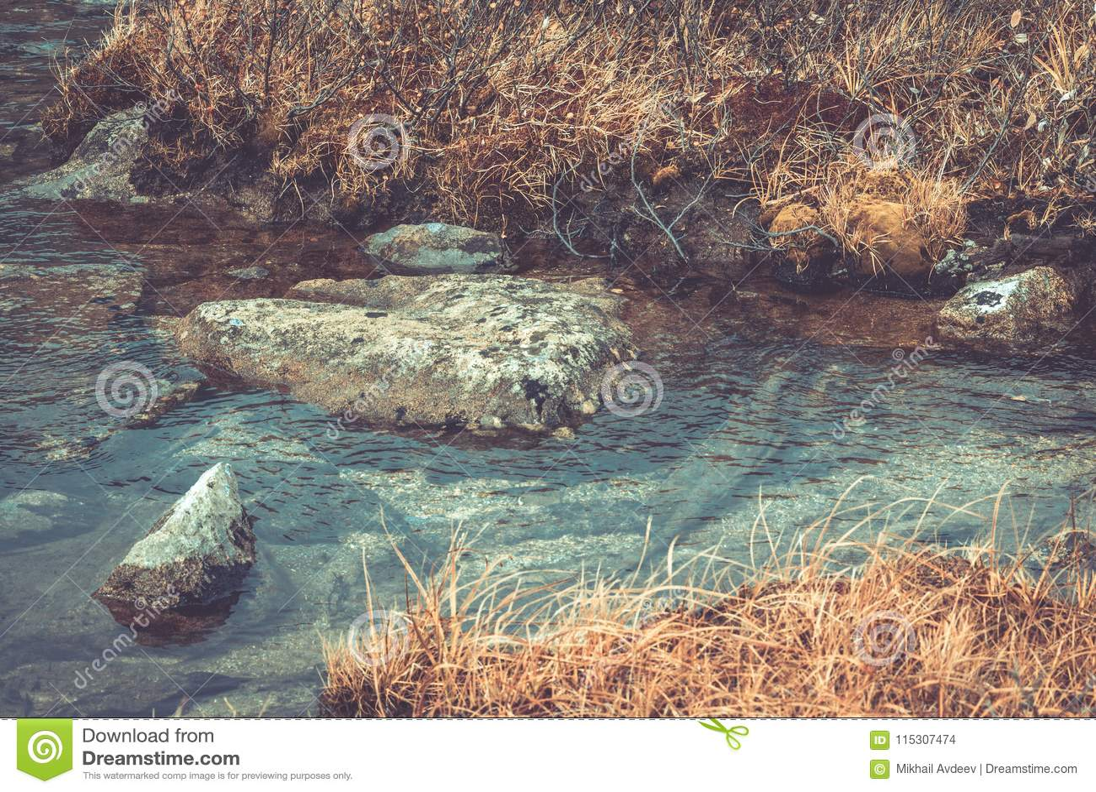 Mountain stream in the rocks