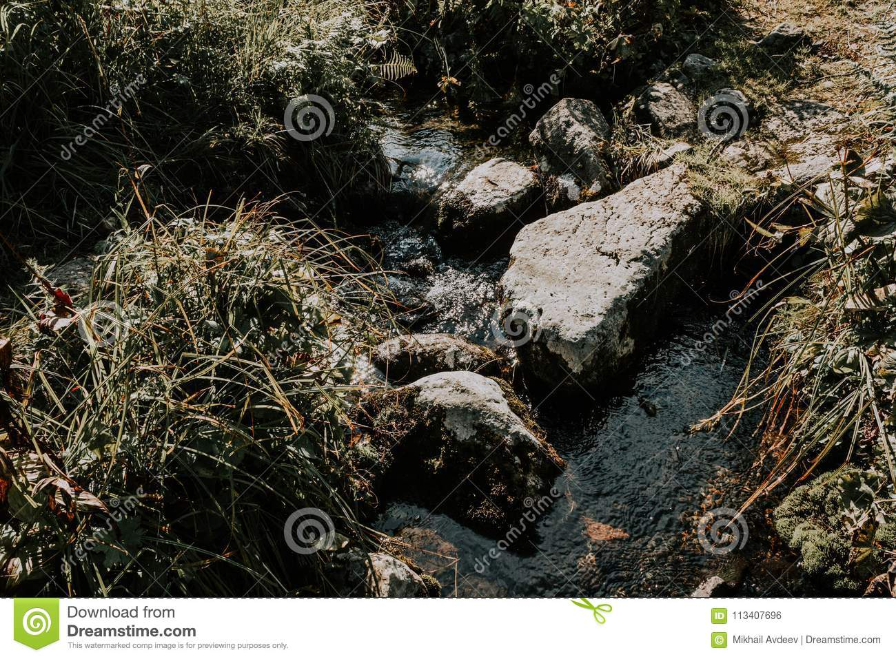 Mountain stream, a spring in the rocks