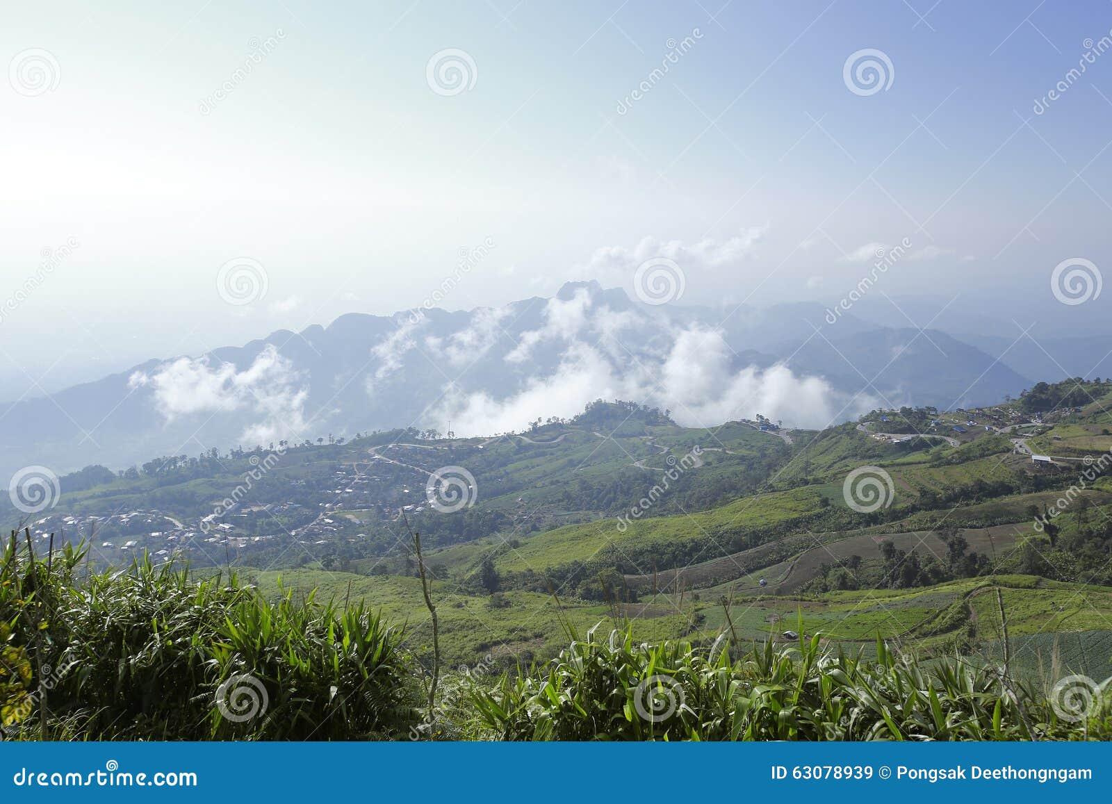 Download Mountain View Avec Le Chemin Chez Phu Tubberk, Point De Repère De Touristes De Province De Phetchabun En Thaïlande Image stock - Image du north, chaussée: 63078939