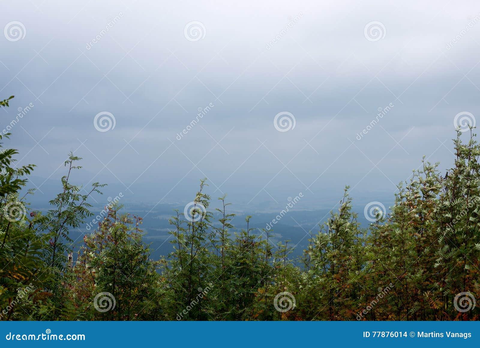 Mountain View Brumoso De La Mañana Foto de archivo