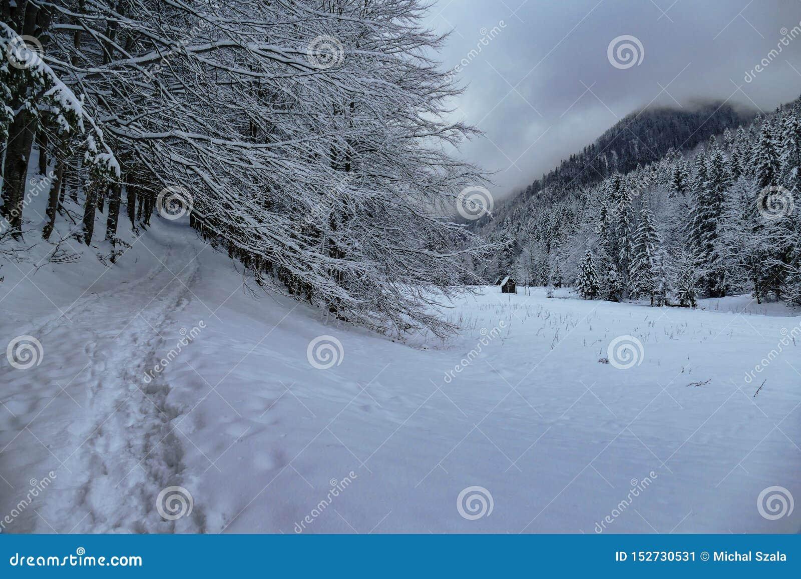 Mountain View do inverno com trajeto e construção