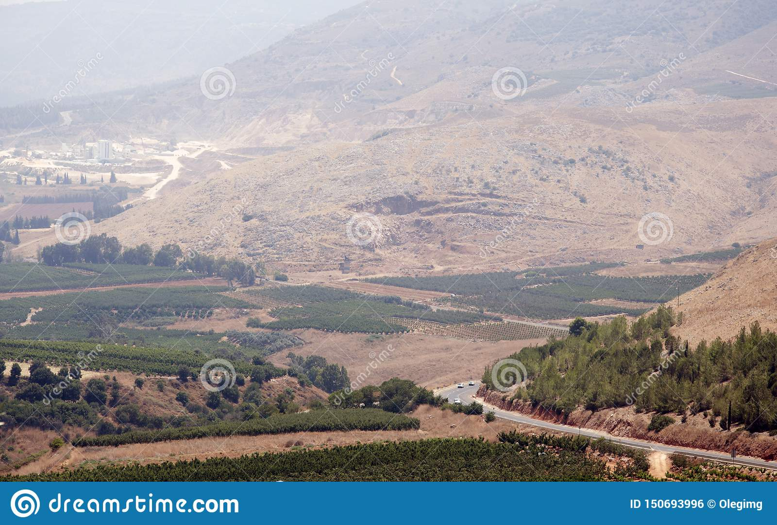 Mountain View e frutteti dell uva in Israele nordico