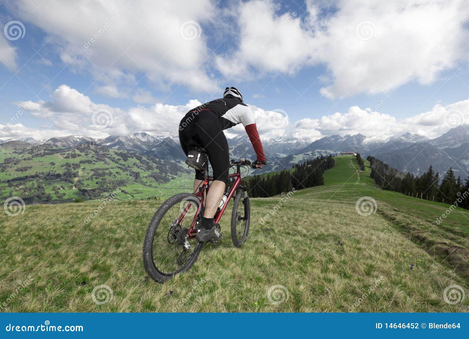 Mountainbiker Bike View Mountain Stock Image ...
