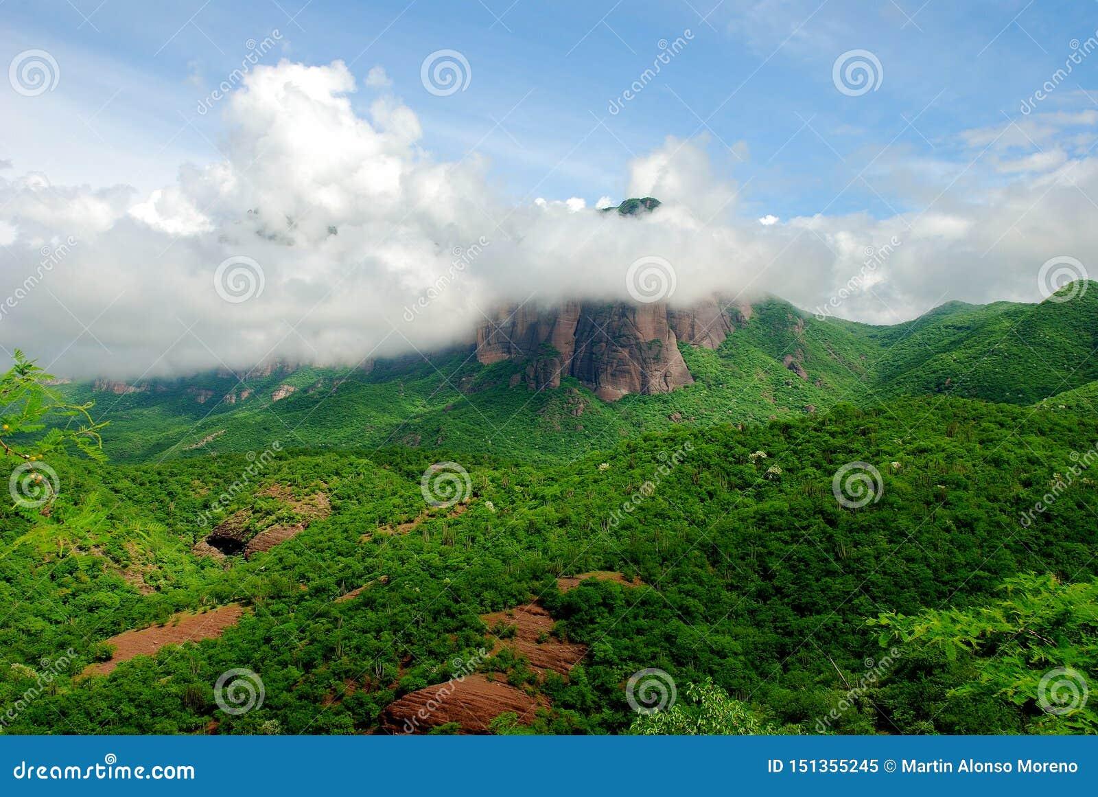 Mountainous landscape of Sierra Madre in Sinaloa Mexico.