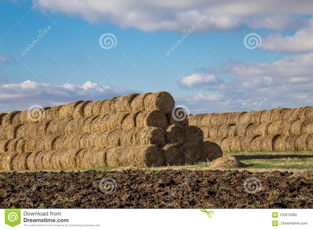 Mountains Collected In A Roll Of Hay Bales For Further
