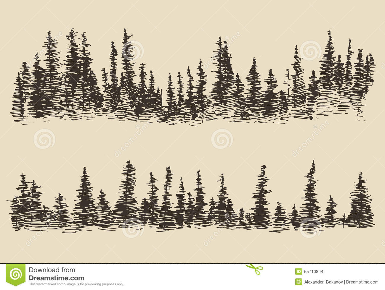 Mountains contours fir forest engraving vector stock for Forest scene drawing