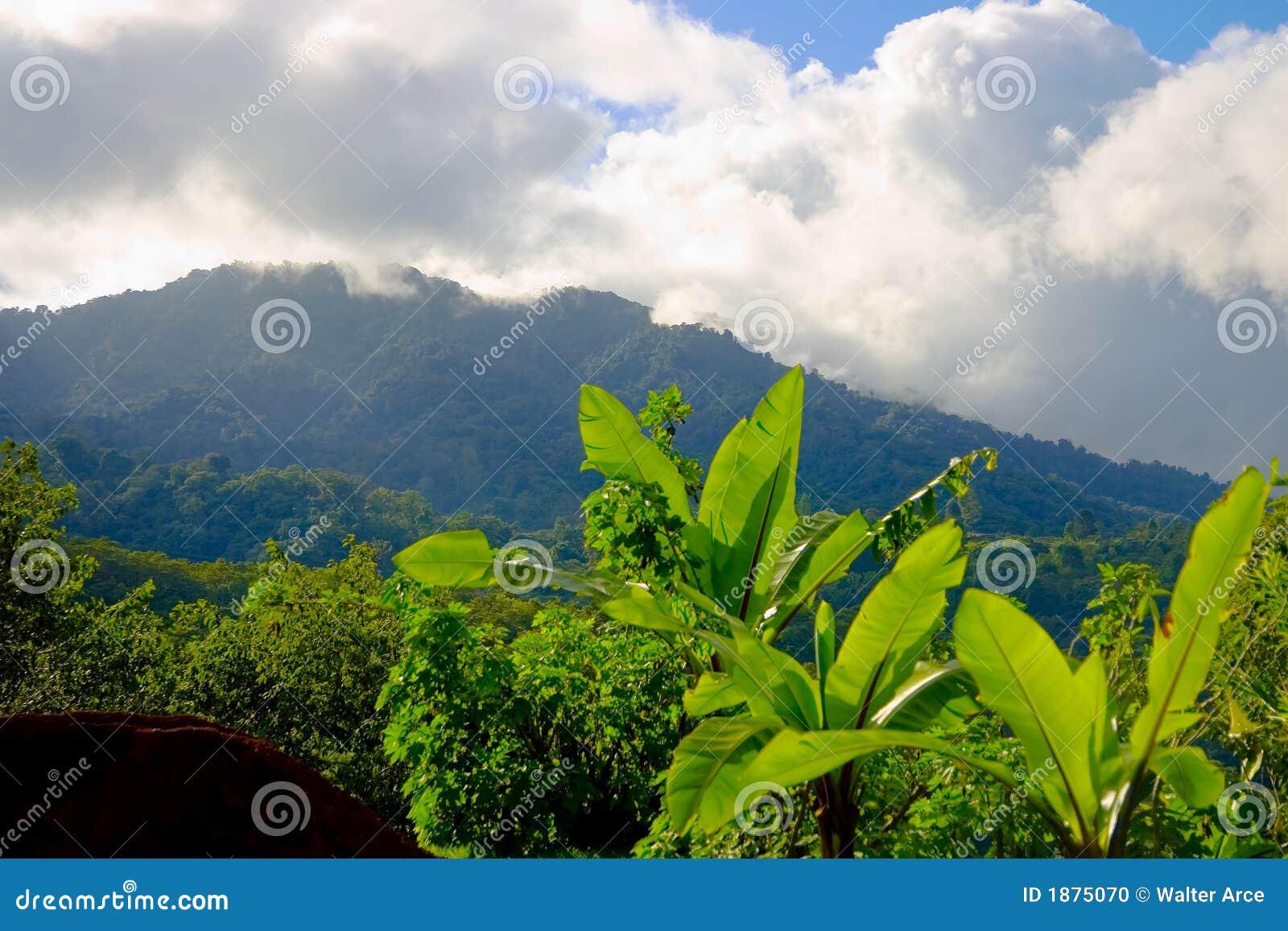 Jaguar San Jose >> Mountains In San Jose, Costa Rica Stock Photo - Image: 1875070