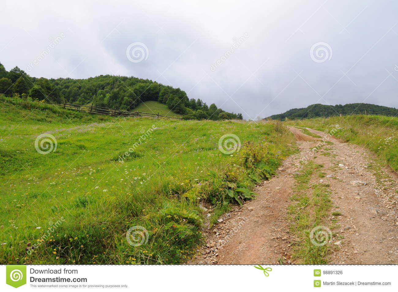 Mountains Tatra landscape with green forest, blue clouds and meadow