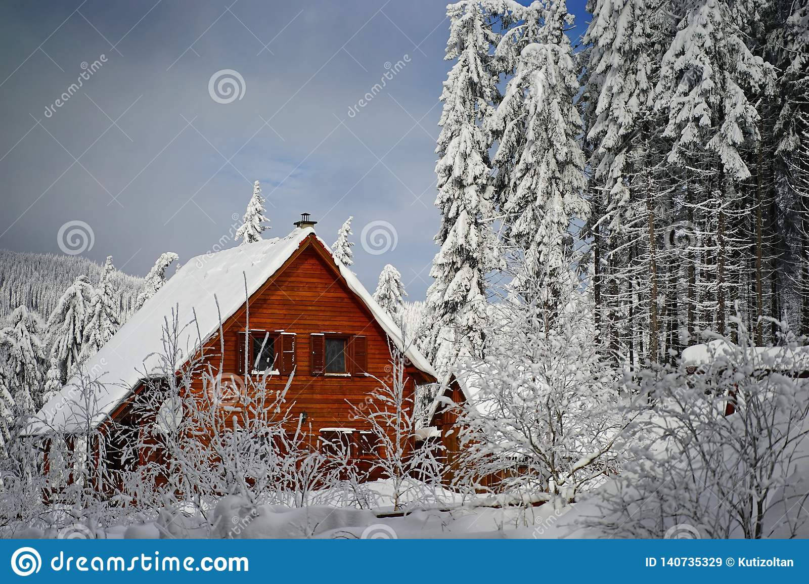 Mountains winter pine tree forest landscape with a chalet