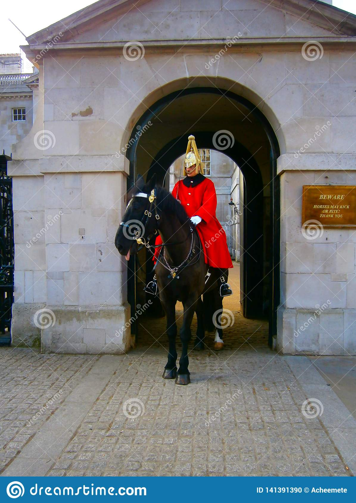 The Mounted Guard