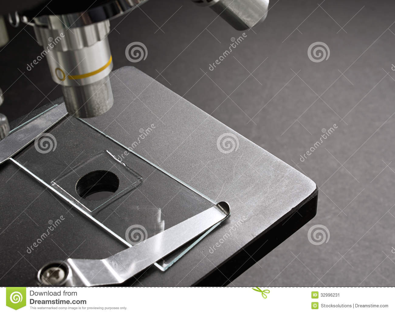 mounted slide on microscope stock image image of magnification