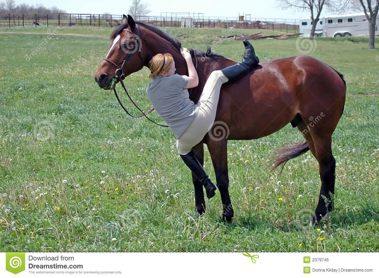 Mounting A Horse Royalty Free Stock Photo - Image: 2379745