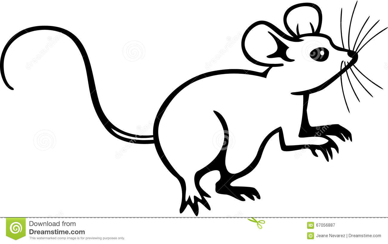Drawing Lines With Mouse C : Mouse stock vector image