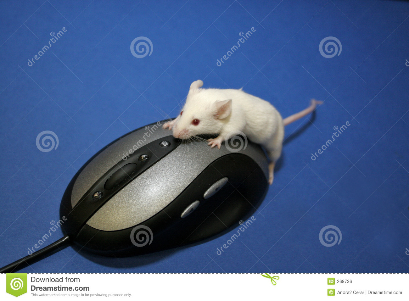 Double clicking my mouse - 5 2