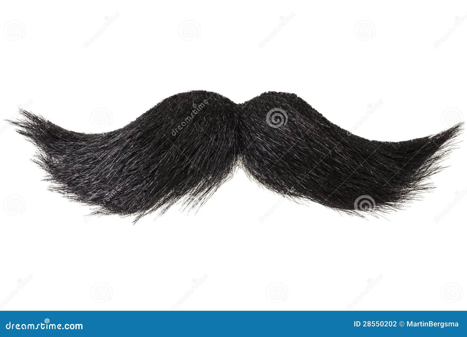 Moustache bouclée d isolement sur le blanc