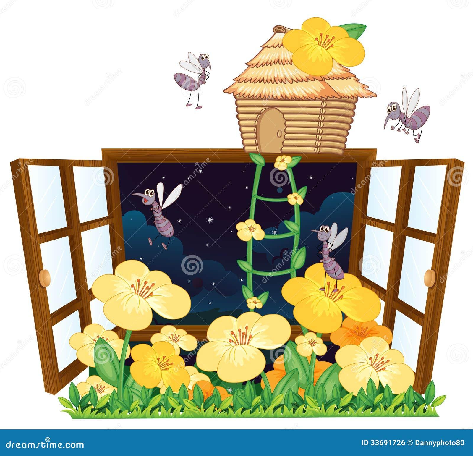 moustique maison d 39 oiseau et fen tre image libre de droits image 33691726. Black Bedroom Furniture Sets. Home Design Ideas