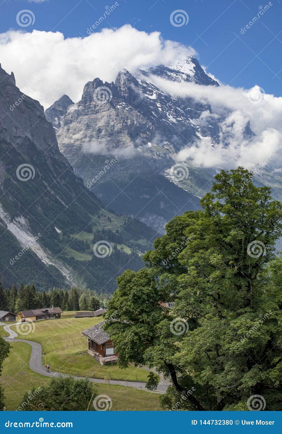 Moutainbiking in Grindelwald, Zwitserland