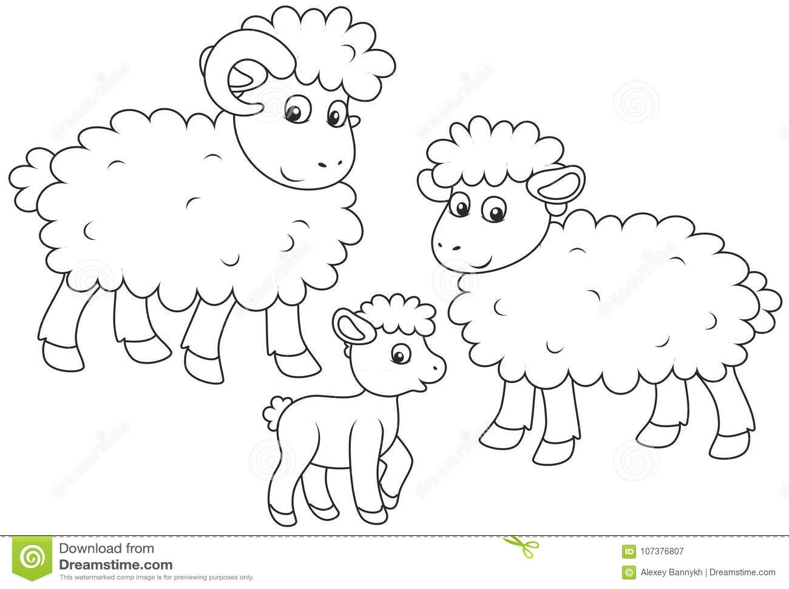 Moutons Agneau Et Ram Illustration De Vecteur Illustration