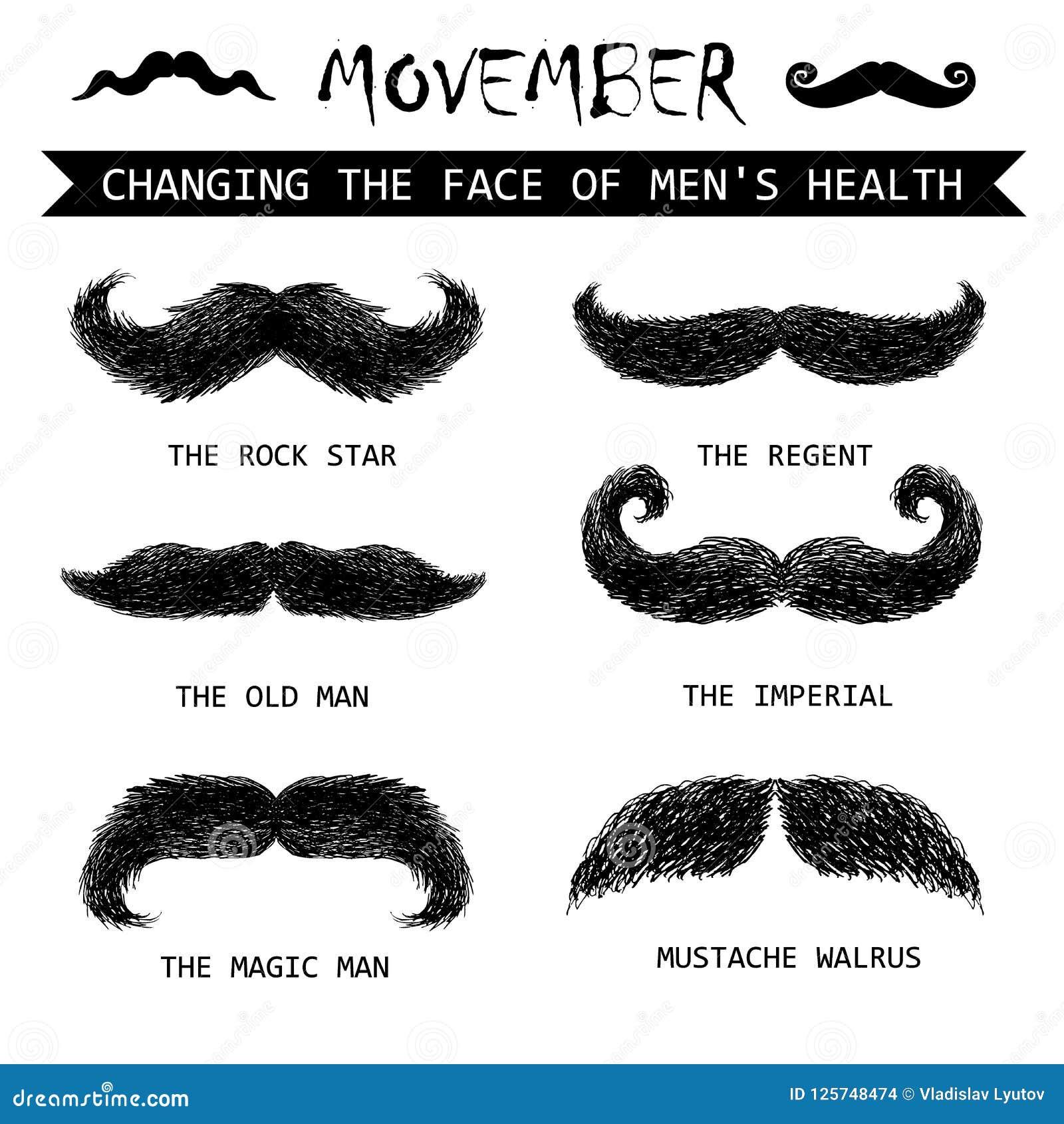 Movember wąsy set