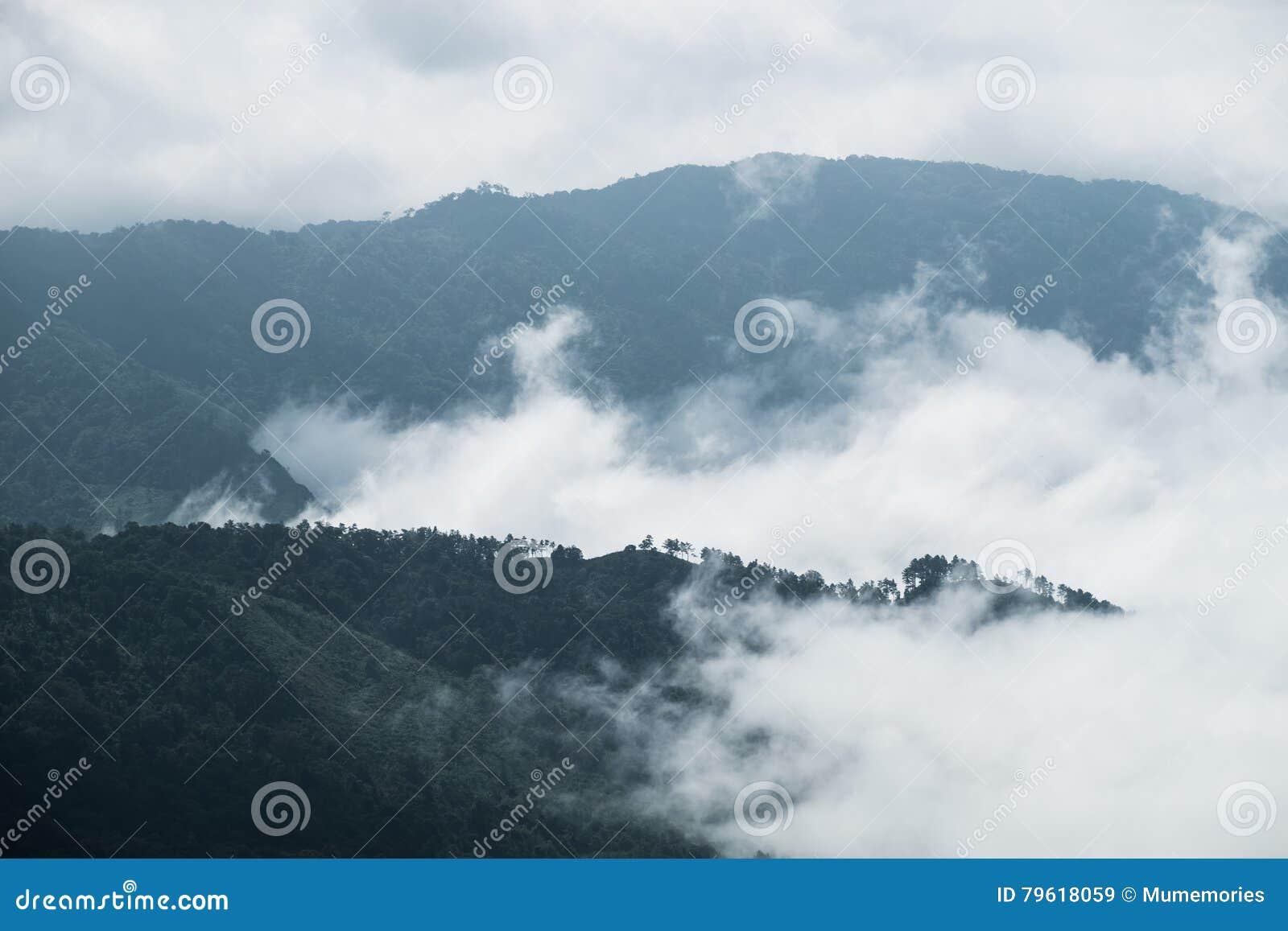 Movimento da névoa da nuvem através da montanha