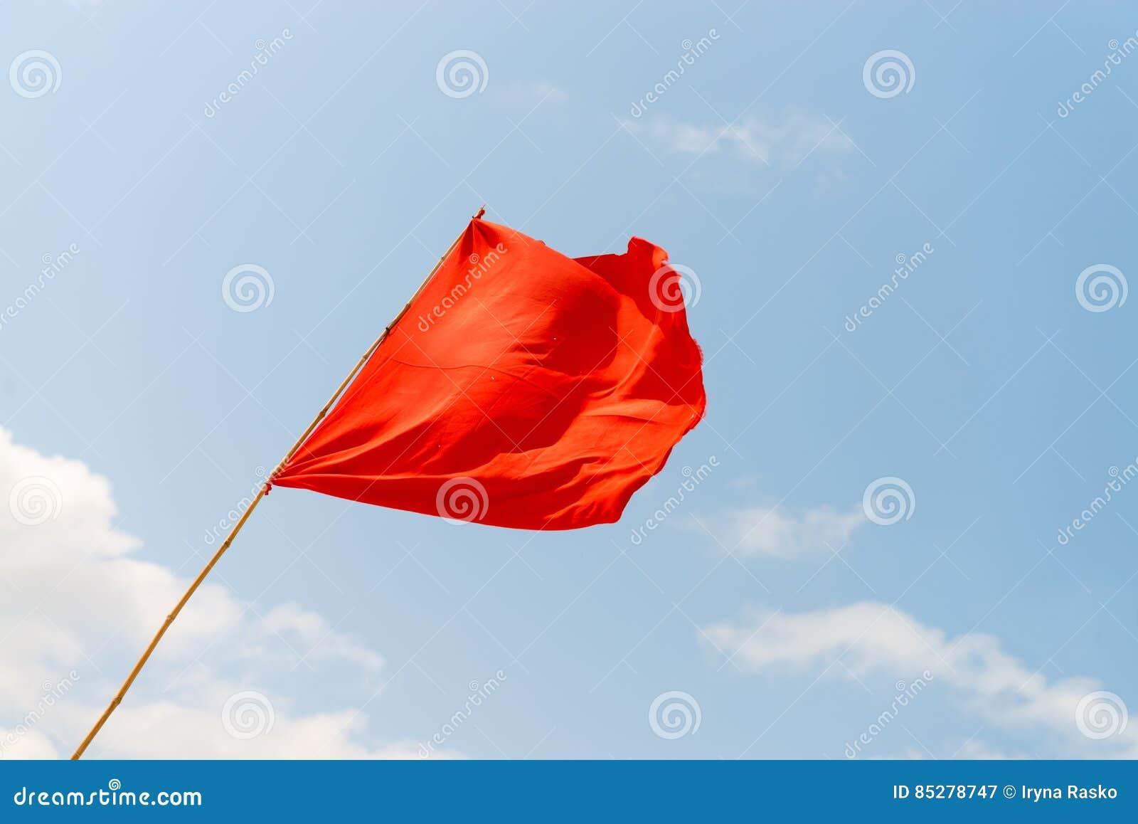 Mrówki plażowej flaga budy ratowników palmowy czerwony drzewo Ostrzegać o niebezpieczeństwach