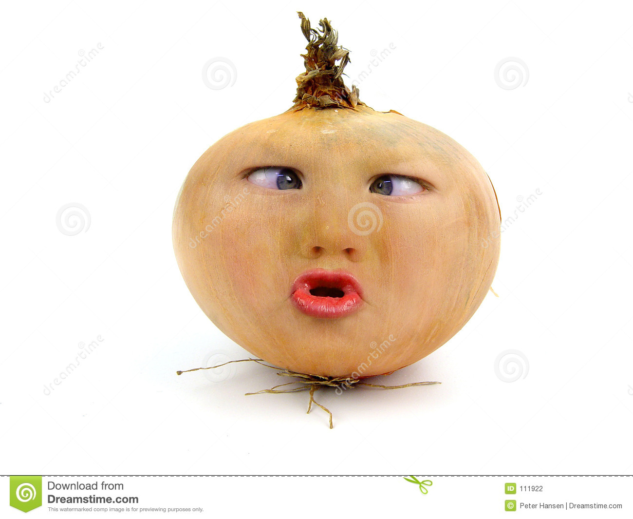 Mr Onion Stock Photography - Image: 111922