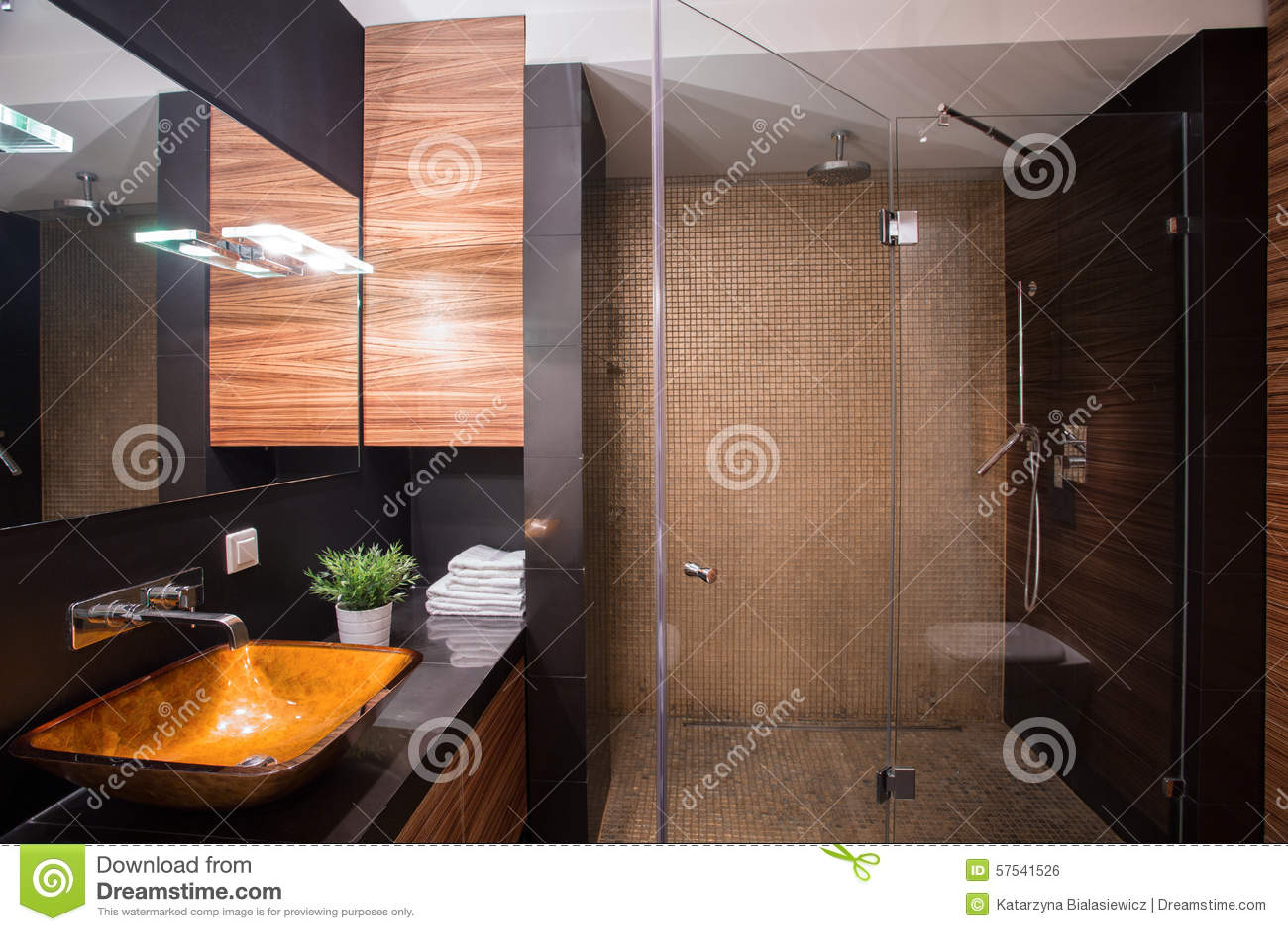Mörkt badrum med den stora duschen arkivfoto   bild: 57541526