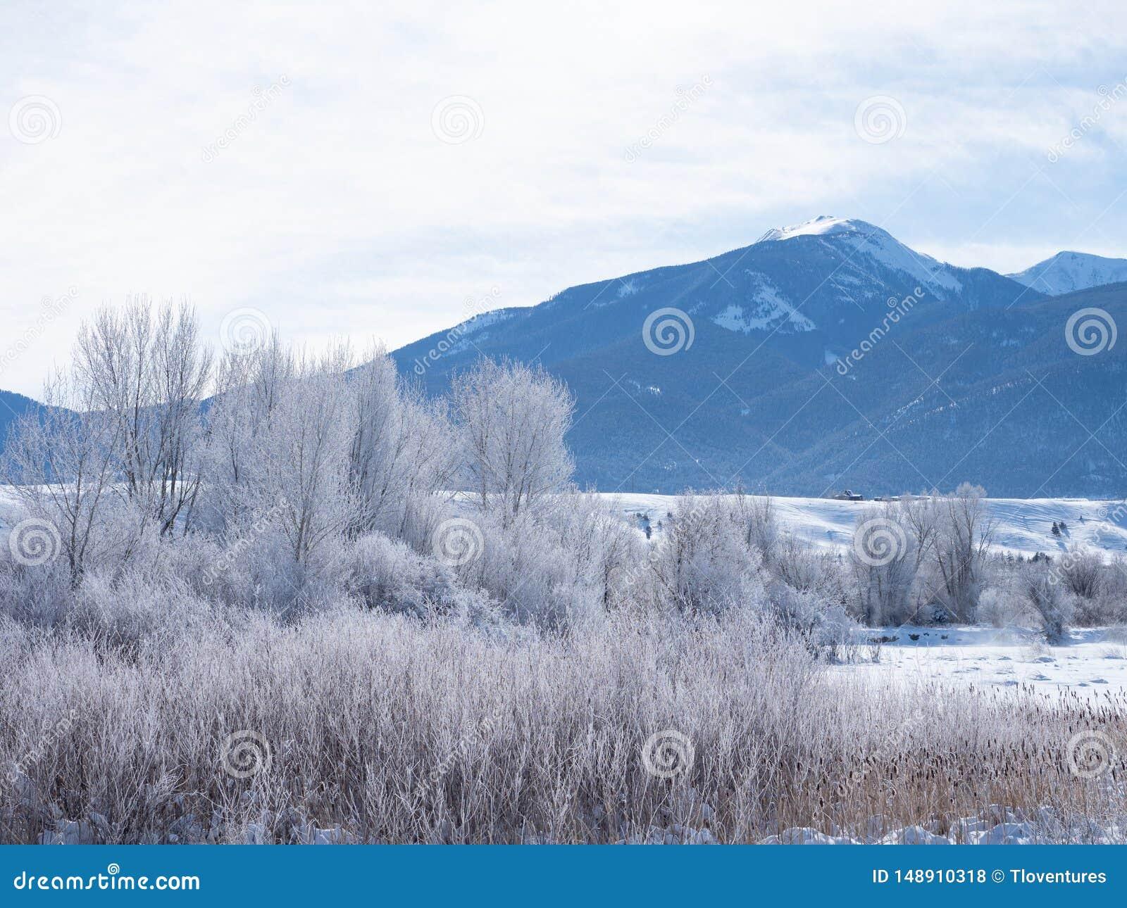 Mro?na raj dolina w Montana