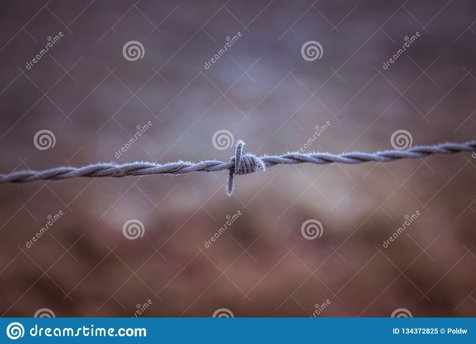 Mroźny drut kolczasty