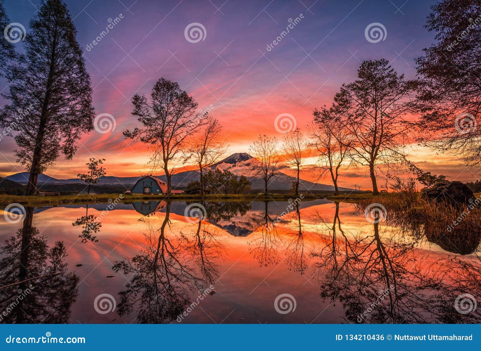 Mt Фудзи с большими деревьями и озером на восходе солнца в Fujinomiya, Японии
