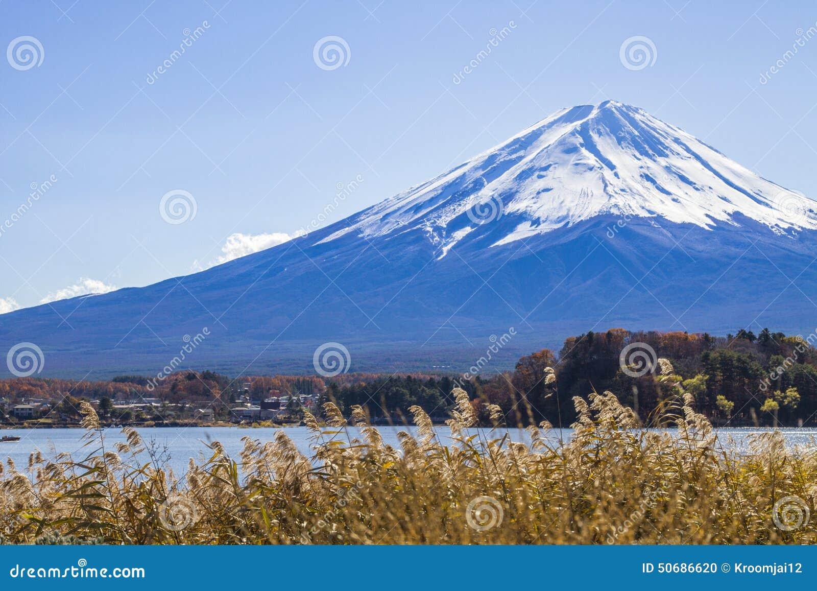 Download Mt 富士和湖kawaguchiko 库存照片. 图片 包括有 scape, 秸杆, 横向, 聚会所, 秋天 - 50686620