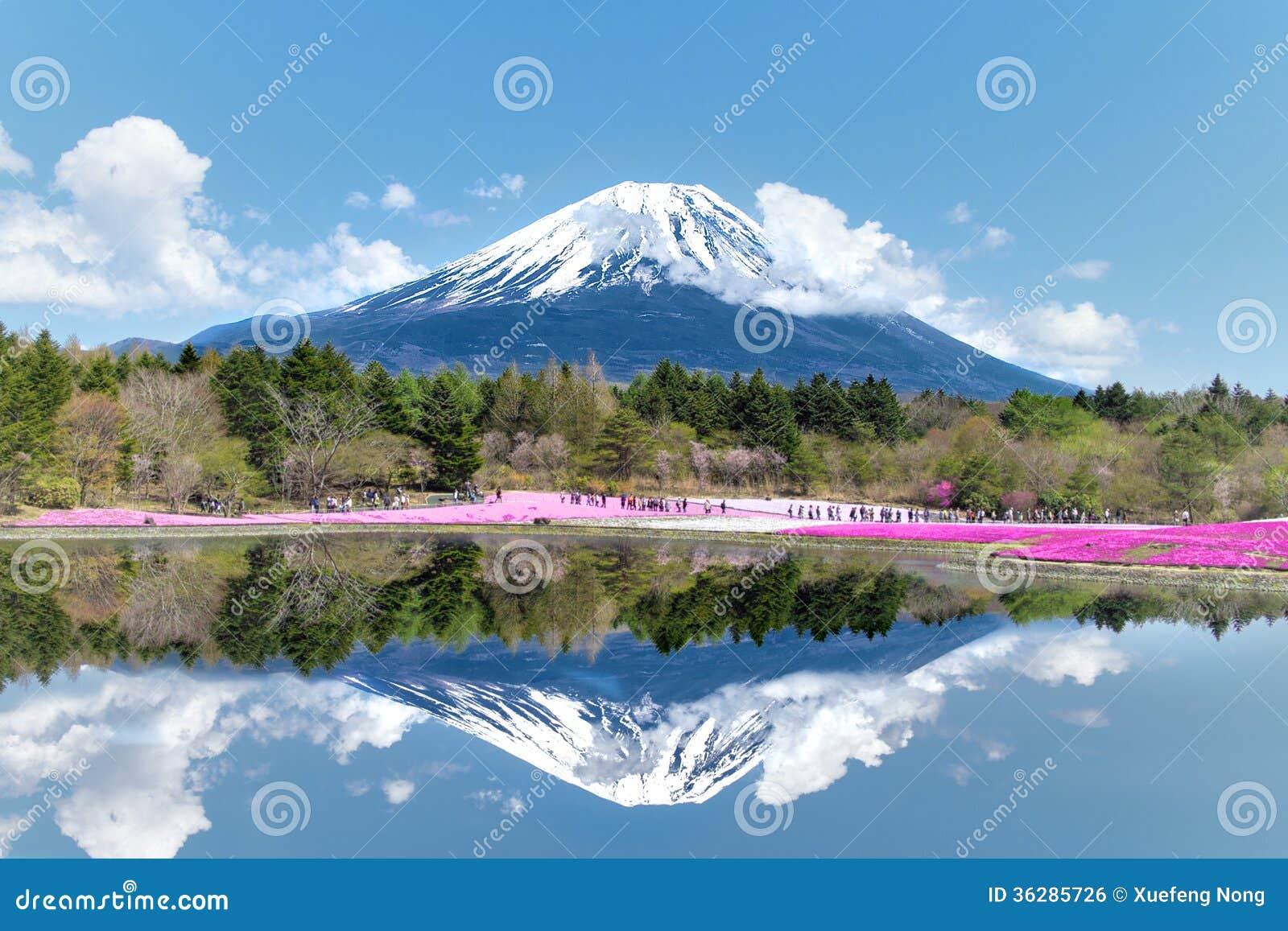 Mt.富士这多数著名地方在日本。