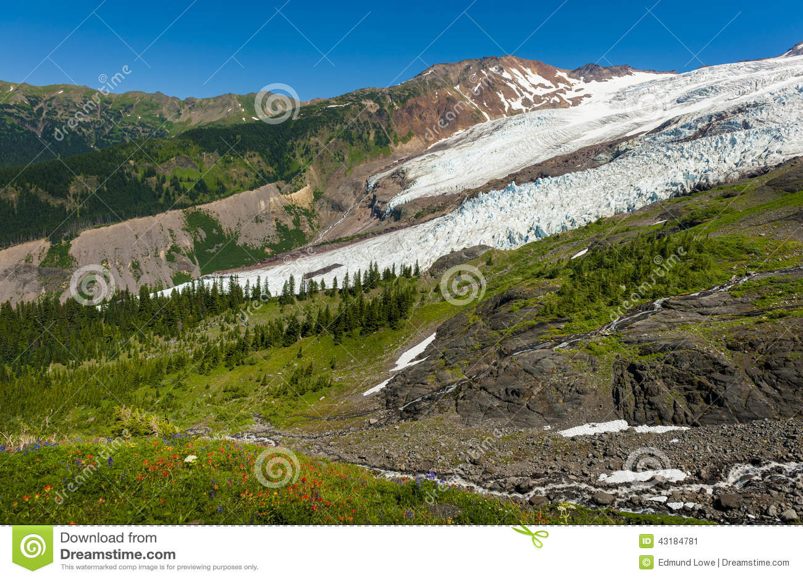 Mt. Baker and the Coleman Glacier