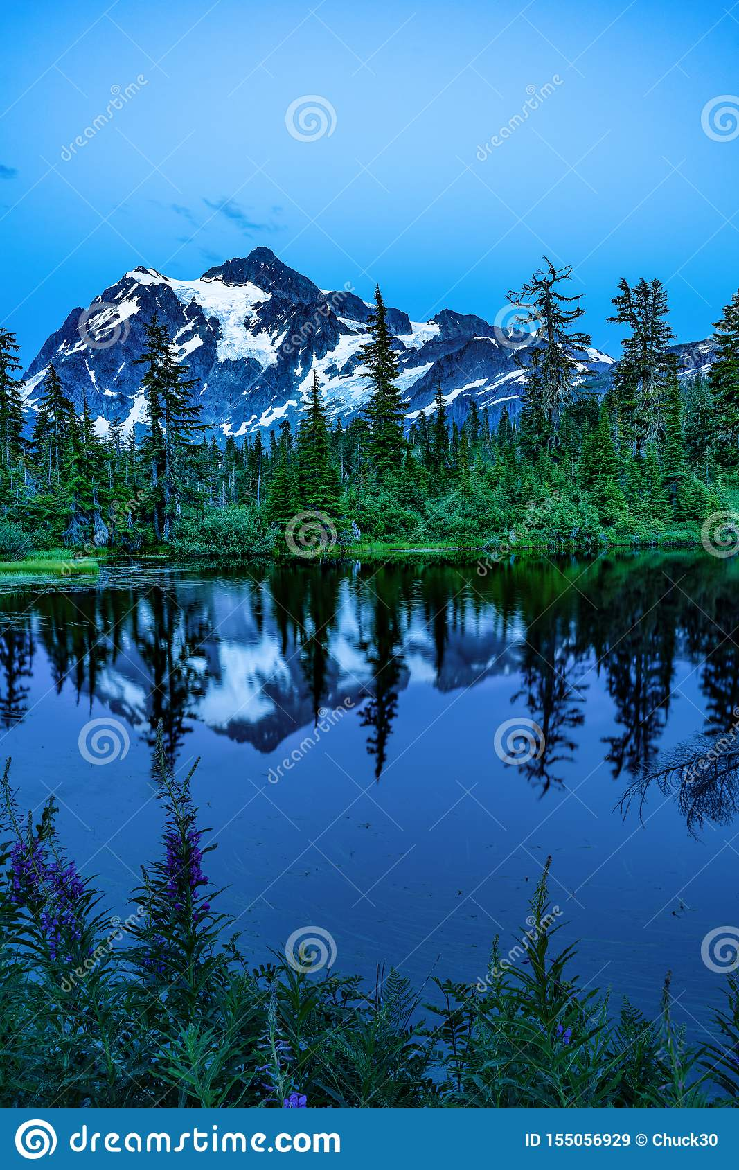 MT BAKER NATIONAL FOREST WA STATE