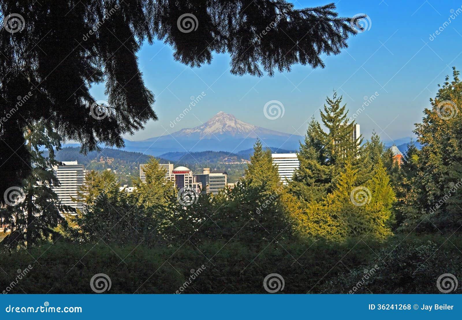 Mt. capa acima de Portland, Oregon